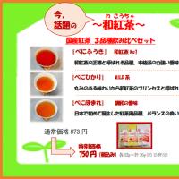 361煎 奈賀園様で心向樹紅茶の販売開始