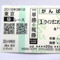 今週の結果 <ウインガニオン 3勝目!>