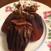 干し柿 無添加オーガニック 中はねっちりトロリ濃厚甘い柿の実がクセになる 元祖ドライフルーツ