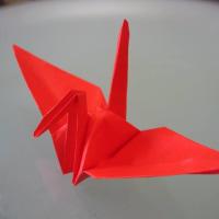「勝手にバカカレチャレンジ」のために折り紙の鶴を折っています。