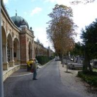 最後のキャンプ旅行ーミロゴユ墓地 (