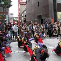 2008-10-26千葉よさこい