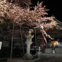 大光寺のライトアップ 2017.3.30