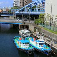 Y158が大岡川で被られた!