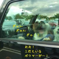 富士山ツァー、雨天決行!