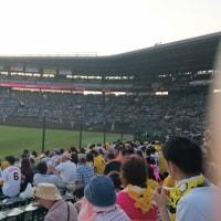 阪神甲子園球場 阪神VS巨人