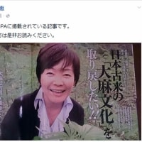 大麻では女優高樹沙耶が逮捕されている。安倍昭恵夫人は大丈夫か?