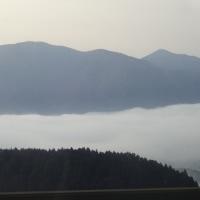 スキー (九重森林公園スキー場)