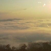 春の霧の海