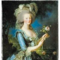 ベルサイユに咲いた孤独な一輪の薔薇