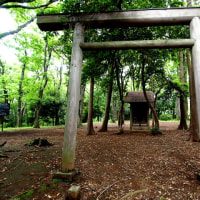 小山田から小野路へ探検散歩②