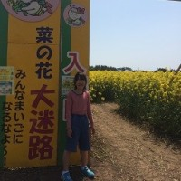横浜町の菜の花フェスティバル☆