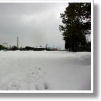 雪の公園。メガネができた。