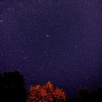 こんなようすです 秋へ<星空自慢の宿>