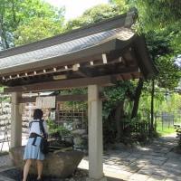 鷺沼城址公園と菊田水鳥公園と奏の杜フォルテ
