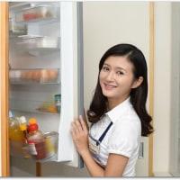 冷蔵庫がそろそろまずいかも…