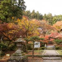 小國神社・大洞院の紅葉とファントム