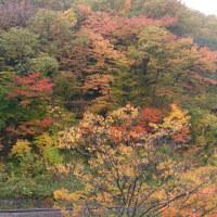東鳴子 旅館大沼さんへ再訪