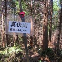 11 二ヶ城山(483m:安佐北区)登山(続き)  途中の「真伏山」ピークに