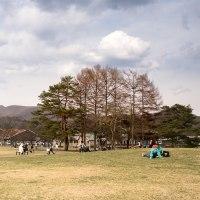 長野県軽井沢にて 縦構図35mm 風景写真 / Sony α7RⅡ