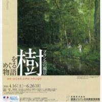 「樹をめぐる物語」展