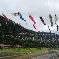 奥ヤンバルの里、鯉のぼり祭り
