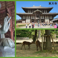 故郷の友人と関西観光