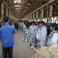 農業経営体の視察研修に行きました