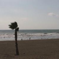 12月23日 和歌山の波