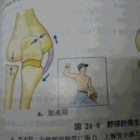 横隔膜リリースで野球肘改善!