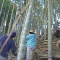 竹林の整備 2