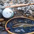 17-06-10-新緑の飛騨へ釣りに