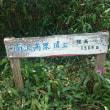 ☆南沢山&横川山行ってきました。