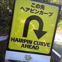 久々に「ヘアピン」って文字を見た!