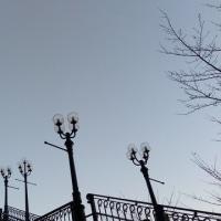 2017-02-26 Photo