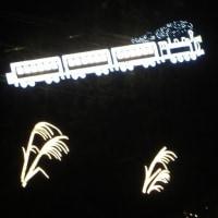 イルミネーション点灯式「あしかがフラワーパーク」