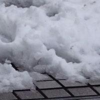 雪の演奏会。