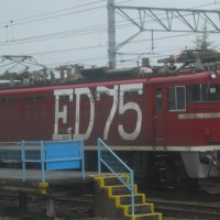 Electric Locomotive#63