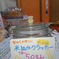 くまさんのぼうけん6/20 シフォンケーキとクッキーのお店うさぎとみかん