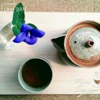 朝摘みのハーブでお茶しています‼