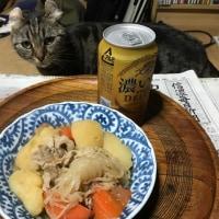 肉じゃが猫。