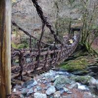 13.奥祖谷二重かずら橋
