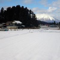 17-01-17 雪道散歩