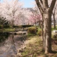 諏訪湖一周ウォーキング 4月