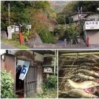 鮎の茶屋 (あゆのちゃや) 静岡県賀茂郡松崎町