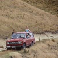 1993年のニュージーランド研究旅行 その20 アワホコモ