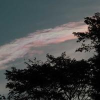 彩雲に和んでゴミに沈んで