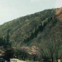 春色の山々がきれいですよ