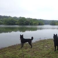 一碧湖~川奈いるか浜公園