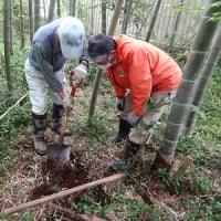 4月22日 活動報告 ③ 竹林整備